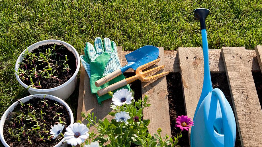 Jak przygotować ogród na wiosnę?