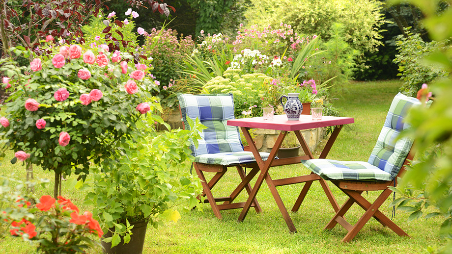 Jak czyścić drewniane meble? Pielęgnacja drewna w ogrodzie