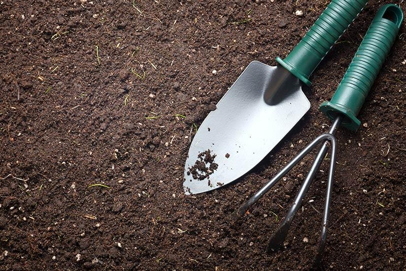 przygotowanie ogrodu i gleby do wiosny