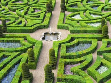 labirynty w ogrodzie w stylu francuskim